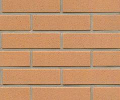 Клинкерная плитка  R206 nolani liso rosso