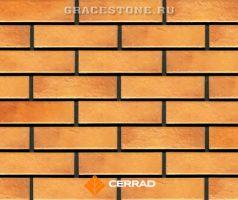 Retro brick curry (CERRAD)
